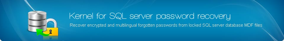 SQL Server Password Recovery Banner